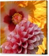 Dahlia With Hibiscus Canvas Print