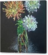 Dahlias Canvas Print