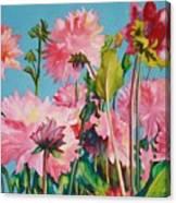 Dahlias Victoria Canvas Print