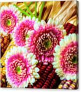 Daises On Indian Corn Canvas Print