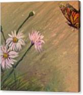 Daisies And Butterfly Canvas Print