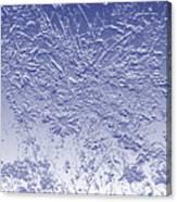 Daisies In Blue Canvas Print