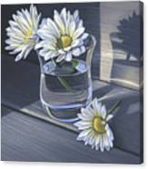 Daisies In Drinking Glass No. 2 Canvas Print
