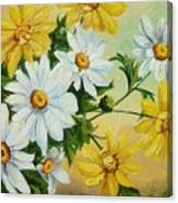 Daisies In The Sky Canvas Print