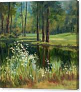 Daisies On The Golf Course Canvas Print