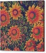 Pop Art Daisies Orange Canvas Print