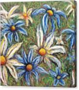 Daisies Pastel Canvas Print