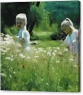 Daisy Field of Innocents Canvas Print