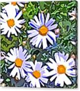 Daisy Flower Garden Abstract Canvas Print