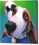 Basset Hound - Daisy Canvas Print