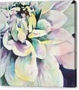 Dalia Canvas Print