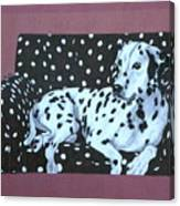 Dalmatian On A Spotted Couch Canvas Print