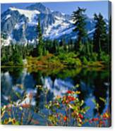 Damian Trevor - Awesome Mountain Tree Nature Landscape Canvas Print