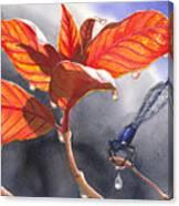 Damsel Fly Canvas Print