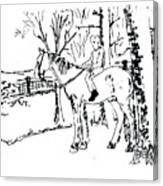 Dan And Horse 11 Canvas Print