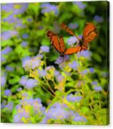 Dance Of The Butterflies Canvas Print
