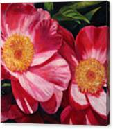 Dance Of The Peonies Canvas Print