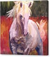 Dances In Fire Meadow Canvas Print