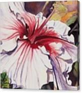 Dancing Hibiscus Canvas Print