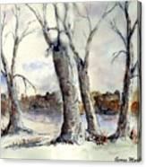 Dancing In Winter Canvas Print