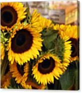Dancing Sunflowers Canvas Print