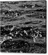 Dancing Water In Black And White Canvas Print
