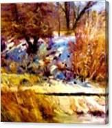 Dancing Winter Shadows Canvas Print
