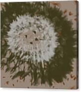 Dandelion Emu 3 Canvas Print