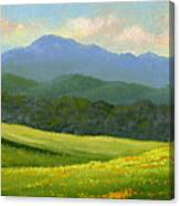 Dandelion Meadows Canvas Print