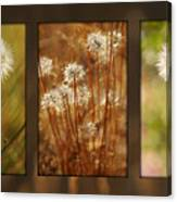 Dandelion Series Canvas Print