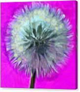 Dandelion Spirit Canvas Print