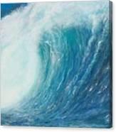 Danger No Surfing Canvas Print