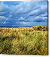 Danish Landscape Canvas Print