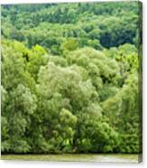 Danube Green Canvas Print
