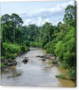 Danum Valley Canvas Print