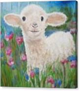Flying Lamb Productions     Daphne Star In The Tall Grass Canvas Print