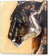Dappled Canvas Print