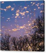 Dappled Sunset-1548 Canvas Print