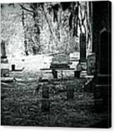 Dark As The Grave Canvas Print