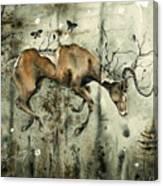 Dark Dreams Canvas Print