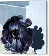 Dark Flower Canvas Print