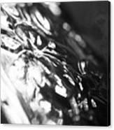 Dark Glass Canvas Print