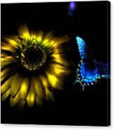Dark Glow Butterfly Canvas Print