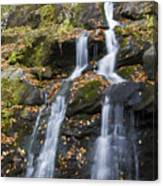Dark Hollow Falls Shenandoah National Park Canvas Print