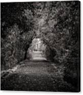 Dark Path In Black And White Canvas Print