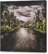 Dark River Woods Canvas Print