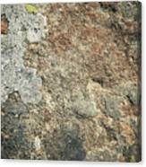 Dark Sandstone Surface With Moss Canvas Print