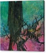 Dark Sentinels Canvas Print