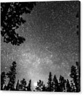 Dark Stellar Universe Canvas Print