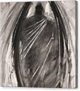 Dark Winged Demon Canvas Print